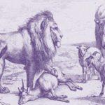Favola sulla prepotenza: La vacca, la capretta, la pecora e il leone